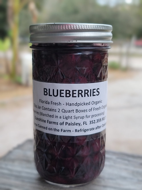 BLUEBERRIES - Organic Fruit Preserved in its own Juice - Canned