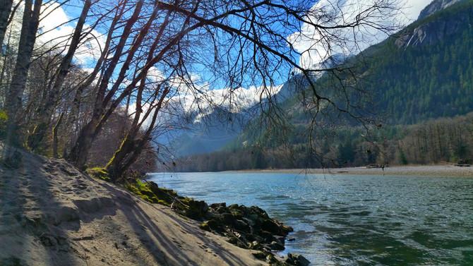 Blog: Regenerative Healing