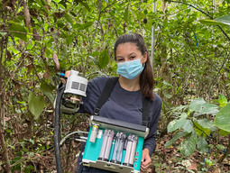 Being a high school  intern in a tropical research project