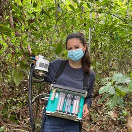 Ser pasante de secundaria en un proyecto de investigación tropical