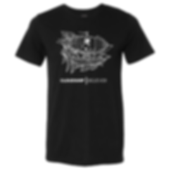 unisex t shirt with ship.png