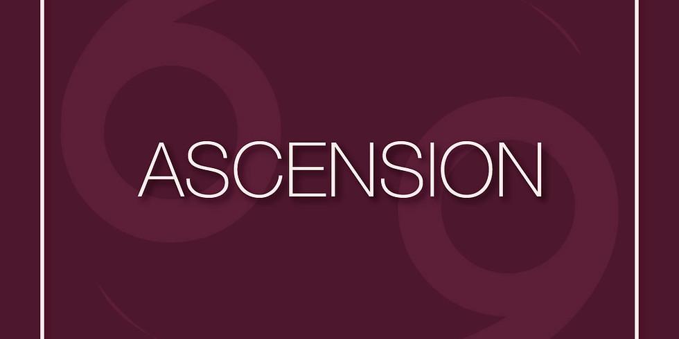 """""""ASCENSION"""": A Solo Exhibition"""