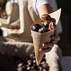 Wandi Nut Festival - Nuts in cone