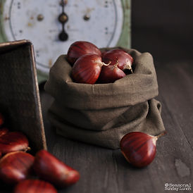 De Coppi chestnuts