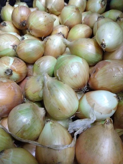 Onions, Yellow, 2lb.