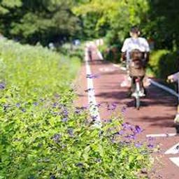 遠足&サイクリング