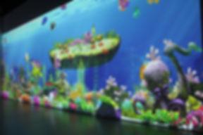 魔法海洋 (24).JPG
