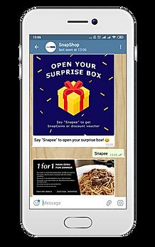 SurpriseBoxPhone.png