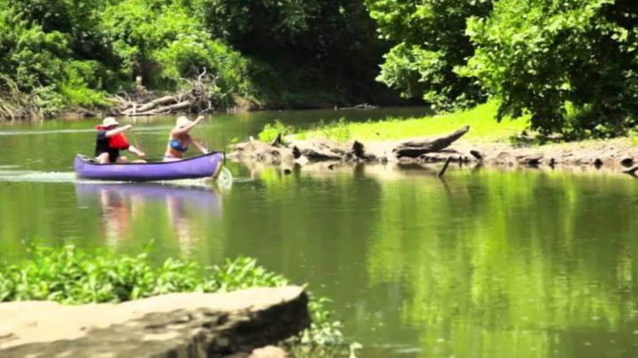 Public Notice: Proposed Discharge of Fill Material Along Harpeth River Bank