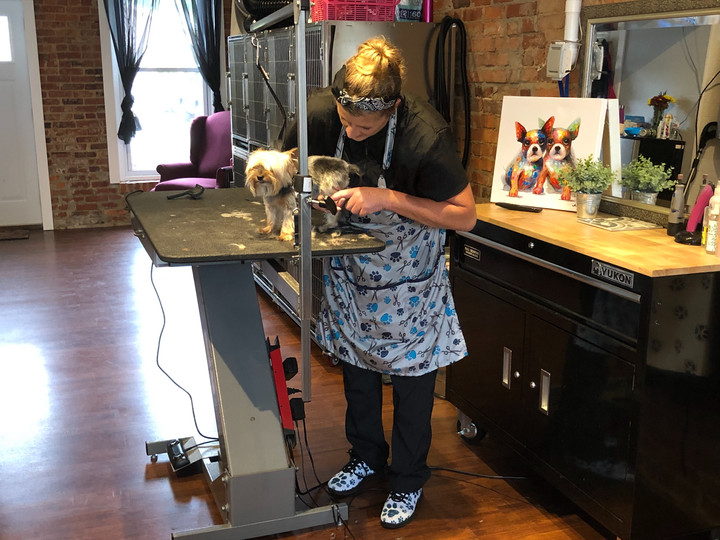 New Groomer Loves to Rock Dogs' Locks