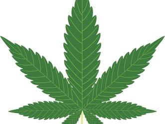 Glaucoma and Marijuana