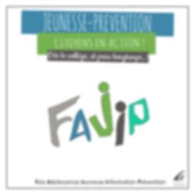 Programme annuel 2015 2016 FAJIP