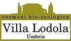 ヴィラロドラ villa lodola オーガニックカラー カラー おすすめ in the sea (インザシー)向ヶ丘遊園 登戸