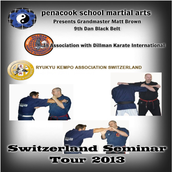 Martial Arts Projection