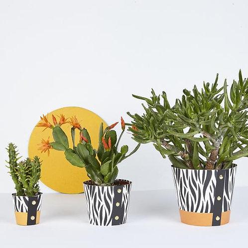 Plant Pot Cover - Zebra Print