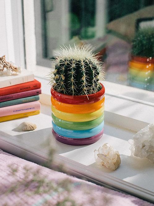Rainbow Plant Pot
