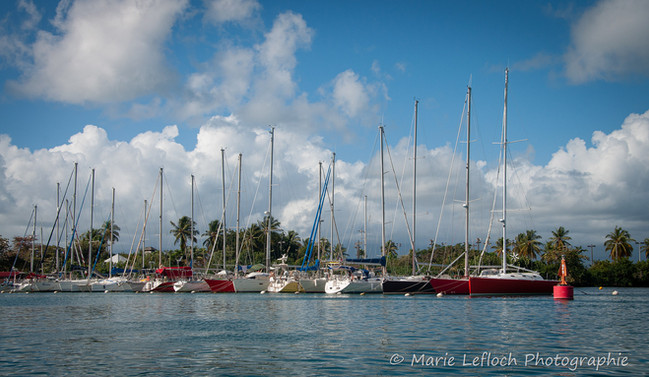 Maximum Kite Guadeloupe 21