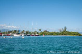 Maximum Kite Guadeloupe 36