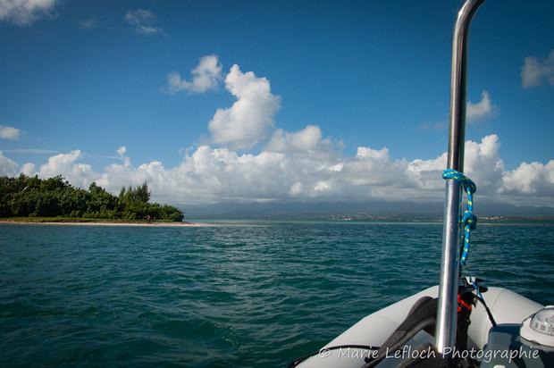 Maximum Kite Guadeloupe 20