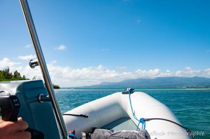 Maximum Kite Guadeloupe 37
