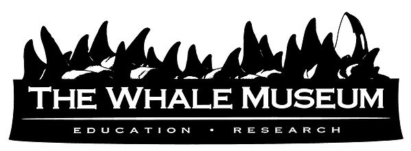 Whale Museum.jpg