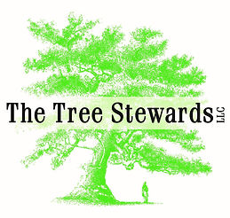 tree stewards.jpg