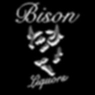 LOGO BISON 2018 NO FONDO.png