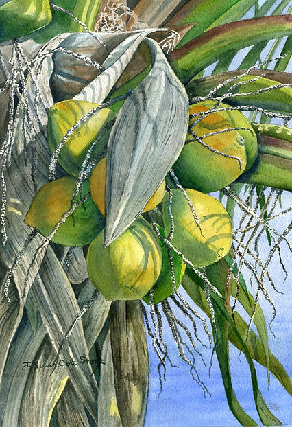 CoconutsInTheSun.jpg