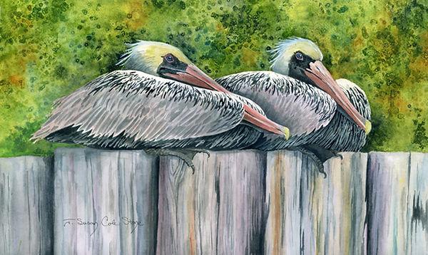 Pelicans,Two_72dpi.jpg