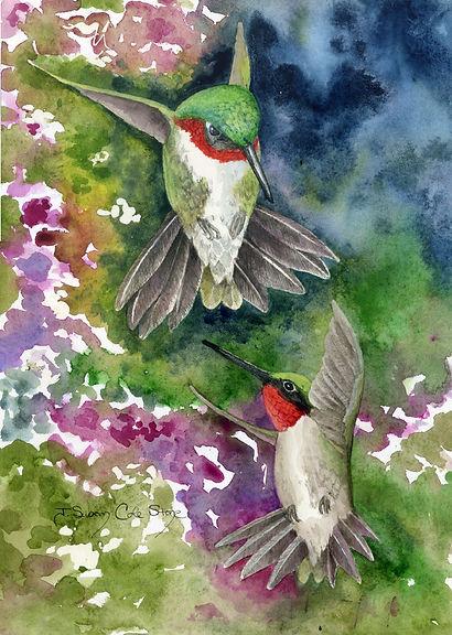 DuelingHummingbirds.jpg