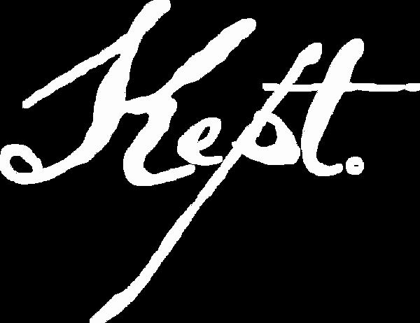 logo V white.png