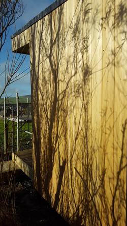 Woodland garden room  (1)