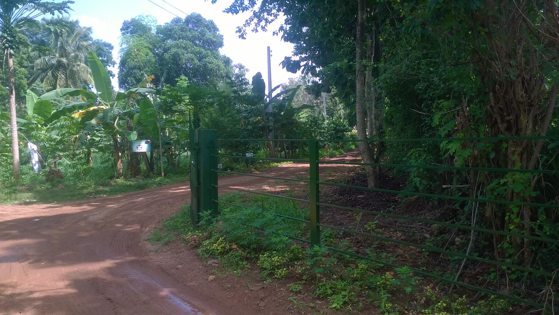 Naula Farm 19.jpg