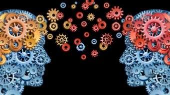 Animer le Social Learning d'un e-learning