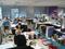 Mythe et réalité du travail dans une start up
