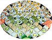 Garden Rolls Party Tray.png