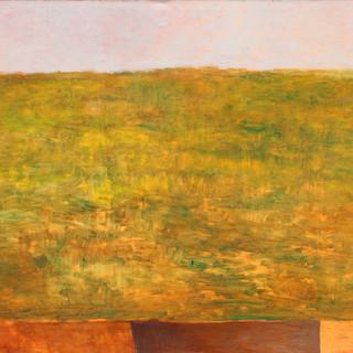Color Field