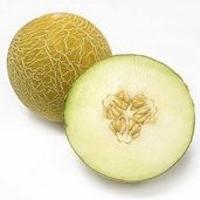 Honeydew melon.jpg
