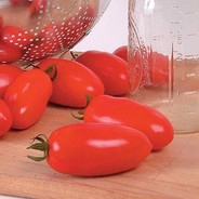 Tomato - San Marzano.jpg
