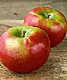 B & B - Cortland Apple.jpg