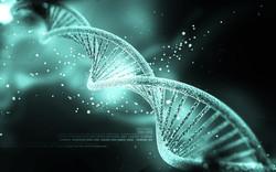 Können unsere Gene Auskunft über Hellsichtigkeit sowie psychische Fähigkeiten geben!