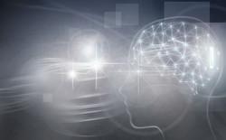 """Wissenschaftliche Aspekte der """"psychic Lesung"""" und """"medialen Lesung"""" – und die mögliche genetische K"""
