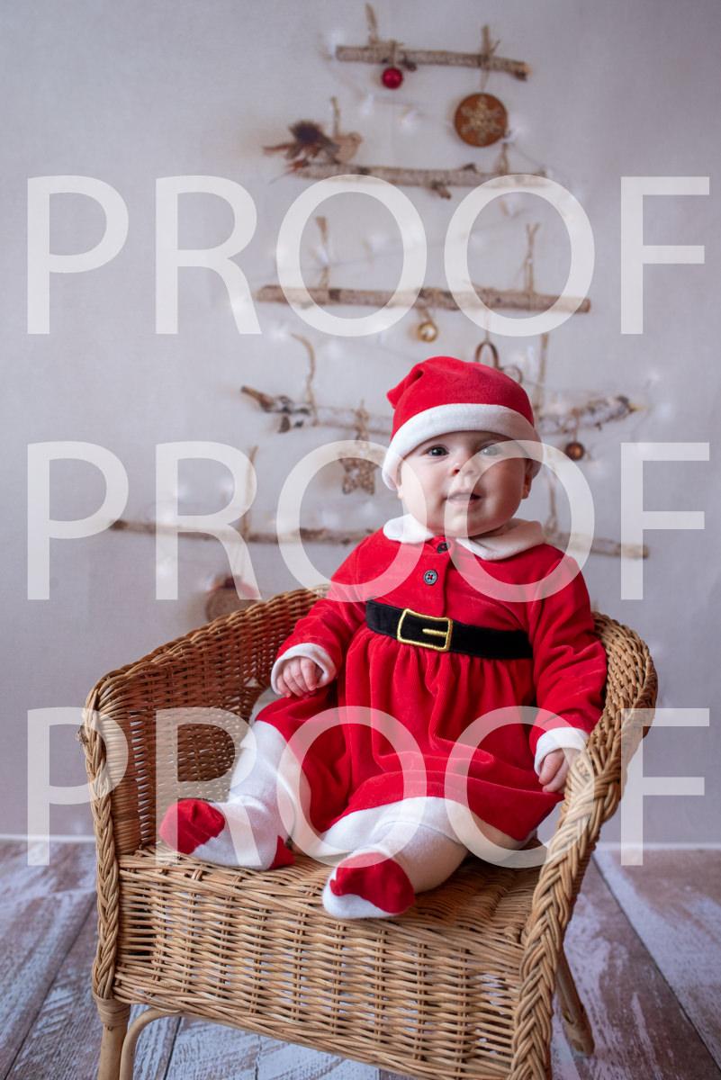 Hartbeeps Christmas-227