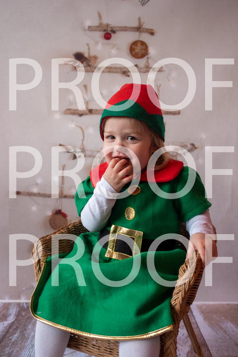 Hartbeeps Christmas-078