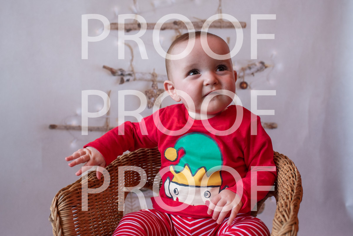 Hartbeeps Christmas-209