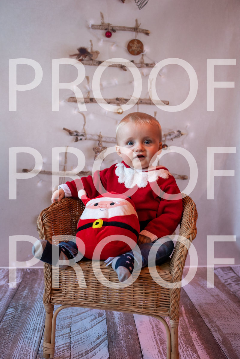 Hartbeeps Christmas-364