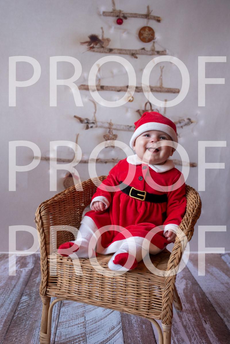 Hartbeeps Christmas-229