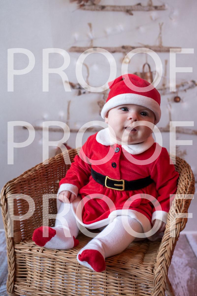 Hartbeeps Christmas-233