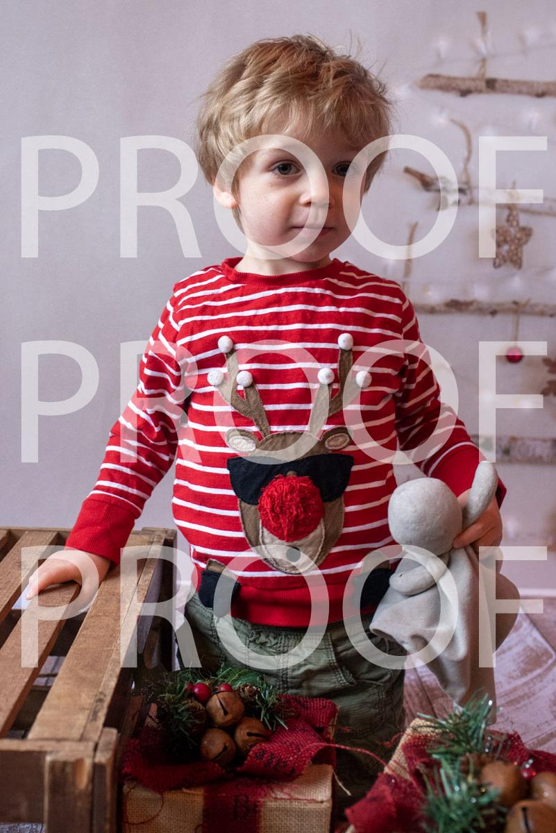Hartbeeps Christmas-009