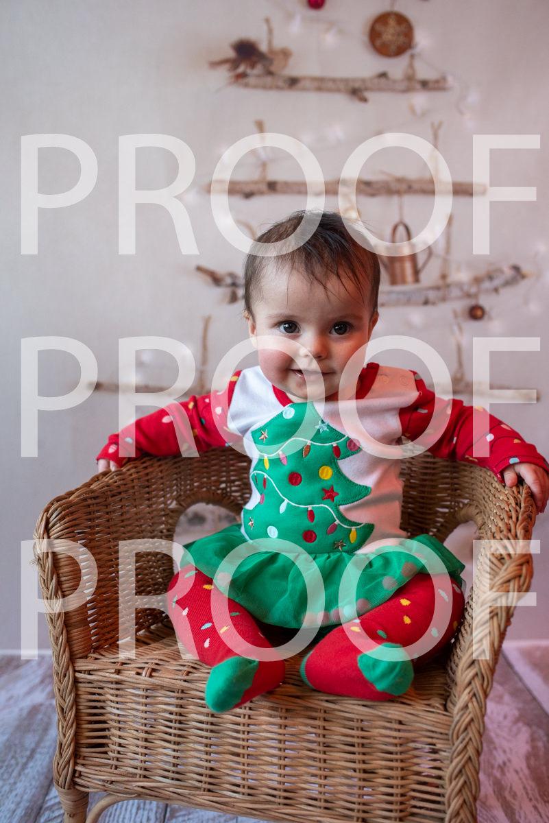 Hartbeeps Christmas-346